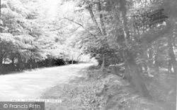 Hawley, Fernhill Road c.1955