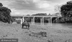 Hay-on-Wye, The Bridge c.1965