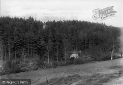 Headley, Pine Hurst 1919