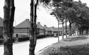 Heathfield, Theobalds Green c1955