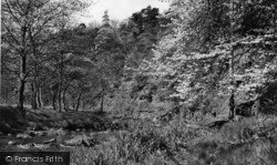 Hebden Bridge, View In Hardcastle Crags c.1955