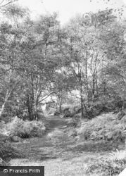 Hednesford, Glade On The Chase c.1960
