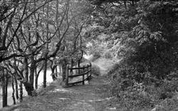 Henfield, Barrow Hill c.1955