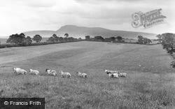 Ingleborough From The Golf Links c.1955, High Bentham