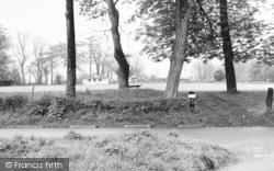 High Easter, Cricket Ground c.1960