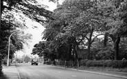 High Lane photo