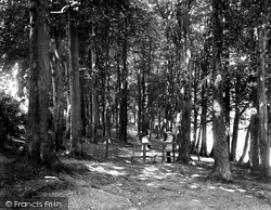 High Wycombe, The Beeches 1921