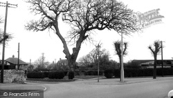 The Walnut Tree, North End c.1955, Higham Ferrers