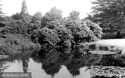 Higher Walton, Walton Gardens, The Lily Pond c.1955