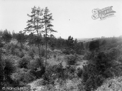Hindhead, Golden Valley 1927