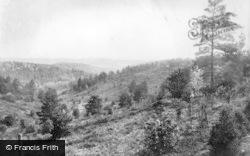 Hindhead, Nutcombe Valley 1908