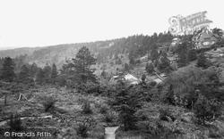 Hindhead, Nutcombe Valley 1924