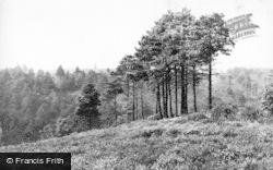 Hindhead, View From Bramshott Camp 1910