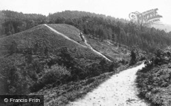 View From Gibbet's Cross c.1935, Hindhead