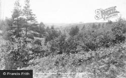 Hindhead, View Near Thirlstane 1900