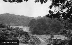 Borsdane Wood c.1950, Hindley