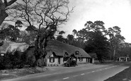Hinton, the Cat and Fiddle Inn c1955