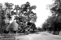 Walsworth Road 1901, Hitchin