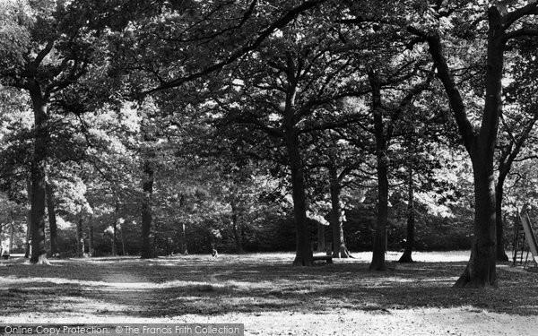 Photo of Hockley, Woods c.1955