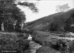 Butterfly Combe 1894, Holford