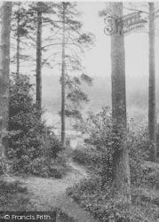 Holmbury St Mary, 1914