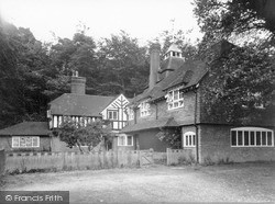 Holmbury St Mary, Pasture Wood c.1955