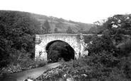 Holne, River Dart, Holne Bridge c1871
