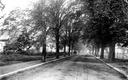 Hornchurch, Great Nelmes Estate, Elm Grove 1909