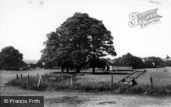 The Park c.1965, Horsforth