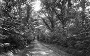 Horsmonden, Sprivers Avenue 1903