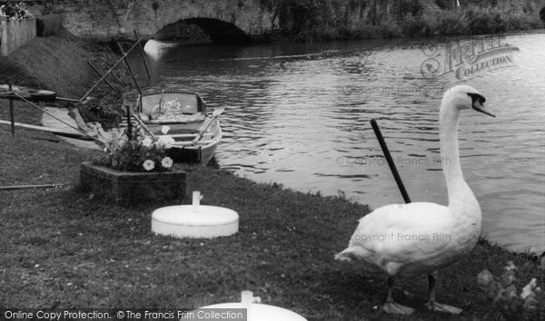 Photo of Houghton, The River Arun c.1955