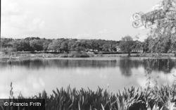 Coltsford Mill Pond c.1965, Hurst Green