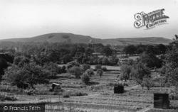 Hurstpierpoint, Wolstonbury Hill c.1955
