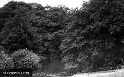 Hutton Rudby, The River c.1955