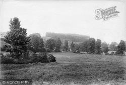 Ilminster, Hern Hill 1907
