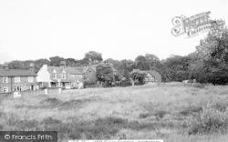 Ingatestone, Millgreen Common c.1965