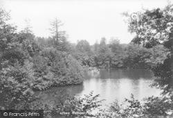 Hammer Pond 1898, Iping
