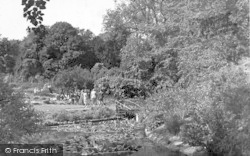 Arboretum, Christchurch Park c.1950, Ipswich