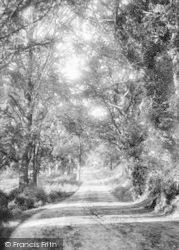 Gainsborough Lane 1909, Ipswich