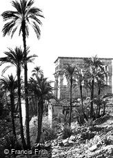 Island of Philae, Group of Palms 1860