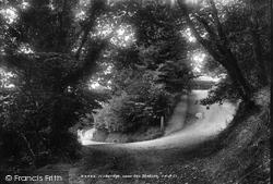 Near The Station 1903, Ivybridge