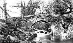The Bridge c.1876, Ivybridge