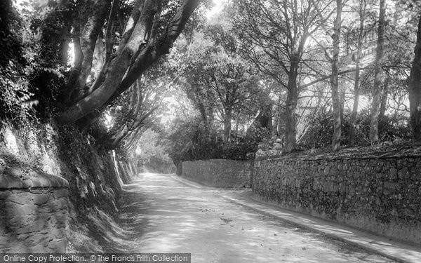 Photo of Jersey, St Helier, Trinity Lane 1894