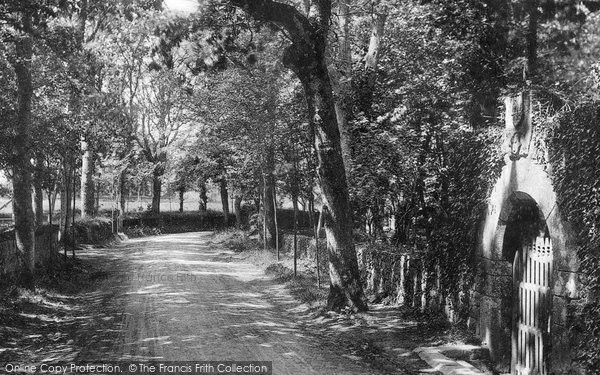 Photo of Jersey, Vinchelez Lane 1894