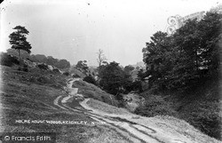 Keighley, Holme House Woods c.1910