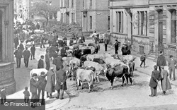 Keighley, The Cattle Market c.1910