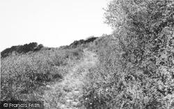 Kemsing, The Downs Walk c.1960