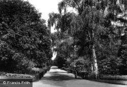 The Gardens 1899, Kensington