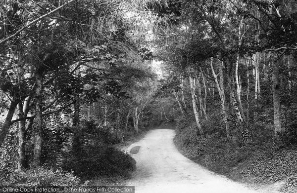 Photo of Kewstoke, Woods 1896