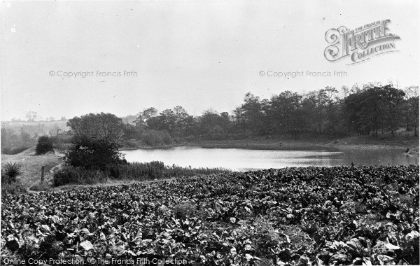 Photo of Killamarsh, The Ponds c.1955